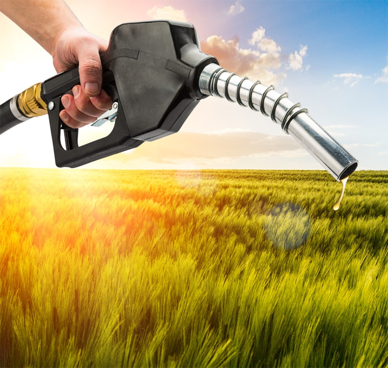 refuel oil